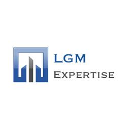 Geng-Merger Expert